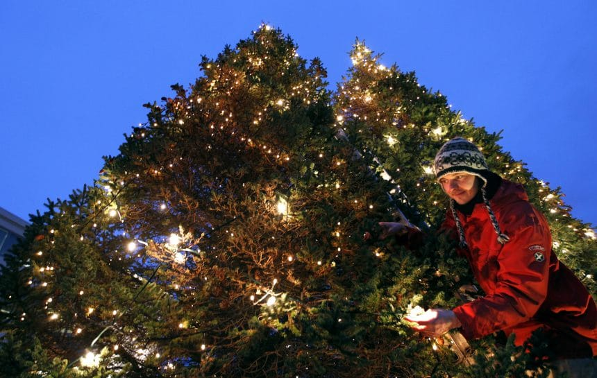 Where Did Christmas Trees Originate.Akureyri Local Astounded By Dated Christmas Tree Tradition
