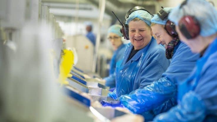 Westman Islands fish processing plant