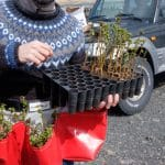 Planted 10,000 Trees to Offset Carbon Emissions