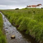 wetlands Iceland
