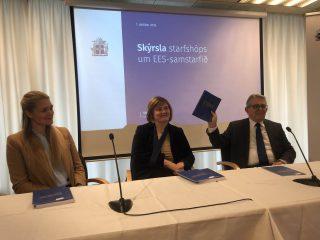 EEA Membership Advantageous to Iceland, Experts Say