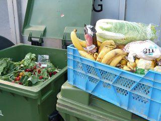 City of Reykjavík to Begin Collecting Organic Waste