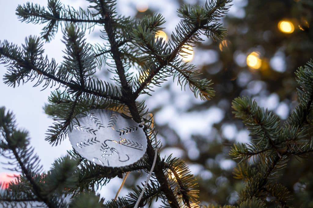 Oslo Christmas Tree Reykjavík