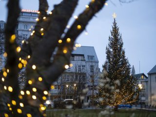 Oslo Tree Lit on First Day of Advent